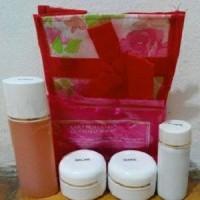 Jual HN Cream Besar pemutih wajah/HN Cream Original murah/pemutih muka 30gr Murah
