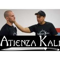 harga Beladiri Filipina Discipline of The Blade-Introduction to Atienza Kali Tokopedia.com