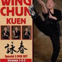Masterclass Wing Chun Kuen Volume 1-Robert Chu