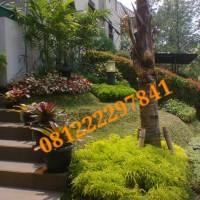 desain taman|gardening