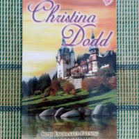Novel Some Enchanted Evening (Malam Penuh Keajaiba