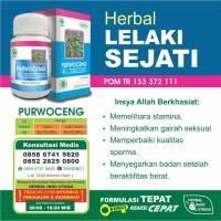 harga Purwoceng(Pimpinella alpine herba extractum) Tokopedia.com