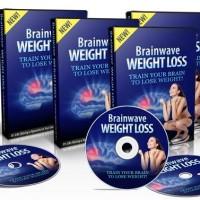 DVD Brainwave cara menurunkan berat badan + Bonus