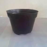 harga Pot Plastik 17 Cm Tokopedia.com