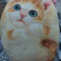 harga Bantal Peluk Kucing Tokopedia.com