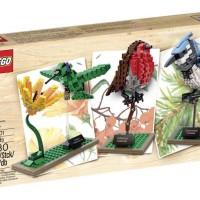 Jual LEGO Ideas CUUSOO - 21301 Birds Blue Jay Humming Bird Robin Exclusive Murah