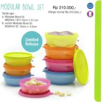 modular bowl set tupperware