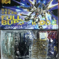 Gundam Strike Freedom Full Burst Mode MG 1/100