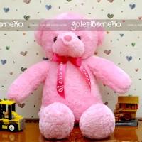 Boneka Little Teddy Bear Pink ( BT - 34 )