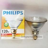 Lampu PAR 38 Philips 120 Watt