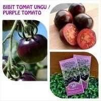 Jual BIBIT / BENIH TOMAT UNGU - INDIGO ROSE PURPLE COLOURED TOMATO Murah