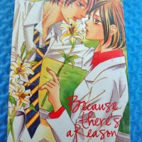 Komik Because There's a Reason (Honda Natsumi) (Oneshot) NEW SEGEL