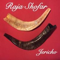 SHOFAR JERICHO Size 17 inch Shofar Terompet Sangkakala Alat Music