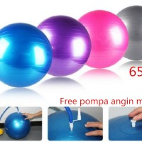 Gym ball size65cm Bola fitness Yoga ball BONUS Pompa angin