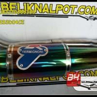 Harga Knalpot Racing R15 - Vixion - NVA - NVL Termignoni Pelangi