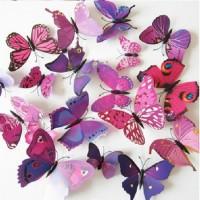 Jual Hiasan Dinding Kupu - Kupu 3D 1 set ( 12 pcs) ungu Murah