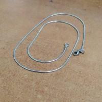 kalung belut bulat titanium 45cm