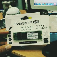TEAM SSD MSATA M2 / M.2 2280 512GB TM8PS4256GMC101