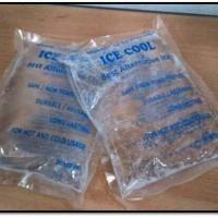 ice gel sedang 150 gram gr pack kecil - dry es kompres gel