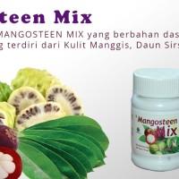 MANGOSTEEN MIX