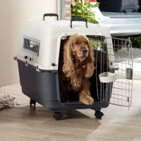 Kandang Anjing / Savic Andes 6 Transport & Housetraining Box (32810ai)