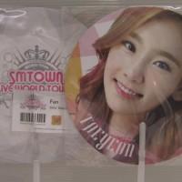 SNSD 2012 SMTown world tour III Taeyeon fan