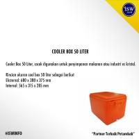 Jual Coolbox Cooler Box Peti Es Merk Ocean 50 liter