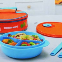 Tupperware Fancy crystalwave lunch set