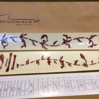 Fret Mark - Tree of Life (Abalone Red) Jockomo Inlay Stickers