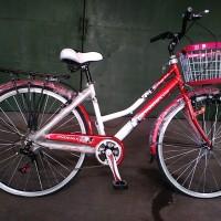harga Sepeda Mini / City.bike Phoenix Star 26