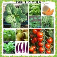 Benih/biji/bibit/seeds sayur 22 jenis paket 1