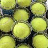 Bola Kasti Tenis Tennis Ball HD for Training