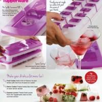 Jual Tupperware Silicone Ice Tray Silikon Ice Try Wadah Tempat Es Batu Murah