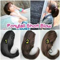 HAIRCLIP / HAIR CLIP / PONYTAIL LURUS SHORT BLOW / JEPIT PENDEK