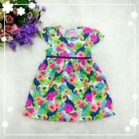 Dress Anak Pefempuan Chameleon 2-5T