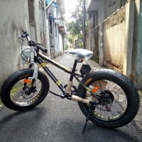 Sepeda Wimcycle 20