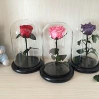 bunga abadi beauty and the beast valentine rose enchanted