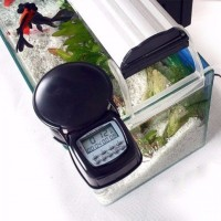harga Automatic Fish Feeder FF03 OLB166 Tokopedia.com