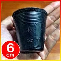 1000 pcs Pot Polibag Polybag kecil pembibitan bibit impor cetak 6cm