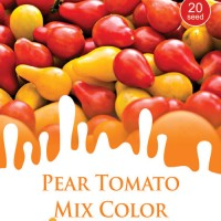 1 Pack Biji Tanaman PEAR TOMATO Mix Color Mini Pouch Maica Leaf