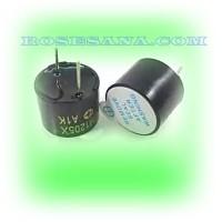 Electro-Magnetic Buzzer