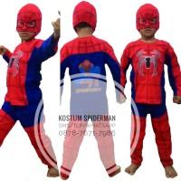 Jual Kostum Spiderman Murah