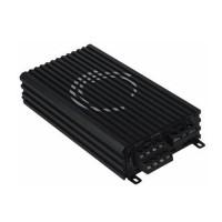 Power Audio Monoblock CRESCENDO EVO 1A1