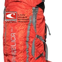 Carrier Consina Angelica 60