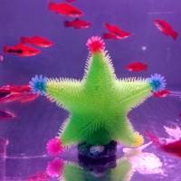 hiasan aquarium anemon bintang laut