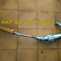 harga Knalpot untuk motor Ninja R, RR & SS crom silencer gold Tokopedia.com