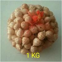 Jual Bawang putih tunggal / bawang lanang Murah