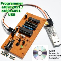 Programmer / Downloader untuk IC at89c2051 at89c4051 USB (8051 family)