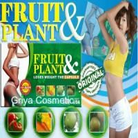 Jual FRUIT PLANT ASLI Murah