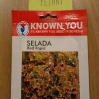 Benih Selada Merah Lettuce RED RAPID 5 Gram
